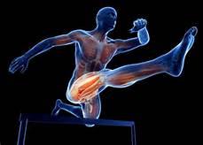 Kephrenoterapia para los deportistas