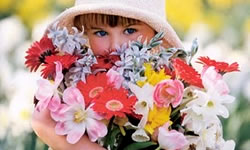 terapia-floral