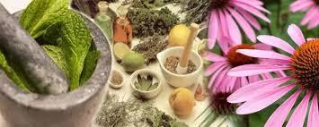 La naturopatía para ganar vitalidad, estabilidad psico-emocional y fortalecer tu cuerpo